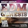 EDM Genesis DEMO Pack