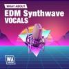 EDM Synthwave Vocals DEMO Pack