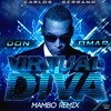 Don Omar - Virtual Diva [Mambo Remix]