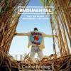 Rudimental - These Days (Cascar Bootleg)