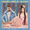 Anuel AA, Shakira - Me Gusta ( Remix Danny Sapy