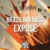 FREE 2019 FL Studio BASS HOUSE Template