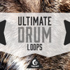 Ultimate Drum Loops DEMO Pack