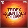 Prog House Sample Pack by TRIDEX