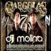 Donde Estan Las Gatas feat Nicky Jam (Dj Molina)