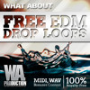 What About: Free EDM Drop Loops