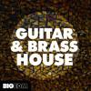 Guitar & Brass House DEMO Pack