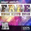 FREE EDM Kits 2018