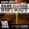 Bass House District DEMO Pack