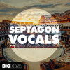 Septagon Vocals DEMO Pack