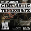 Cinematic Tension & FX DEMO Pack