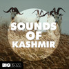 Sounds Of Kashmir DEMO Pack