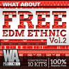 FREE Ethnic EDM Vol. 2