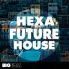 Hexa Future House DEMO Pack