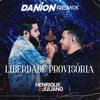 Liberdade Provisoria (Danion Remix)