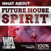 Future House Spirit DEMO Pack