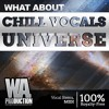Chill Vocals Universe DEMO Pack