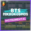 BTS - Mikrokosmos (Instrumental Remake)