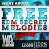 FREE EDM Secret Melodies