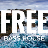 Bass House FLP