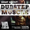 Melodic Dubstep Muscle