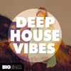 Deep House Vibes DEMO Pack