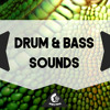 Drum & Bass Sounds DEMO Pack