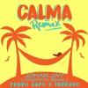 CALMA - JOHAN JAY ( UNNOFICIAL REMIX )