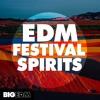 EDM Festival Spirits DEMO Pack