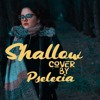Shallow (Lady Gaga & Bradley Cooper cover)
